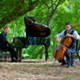 The Piano Guys — RESCHEDULED at Atwood Concert Hall
